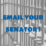 graphic image reading email your senator